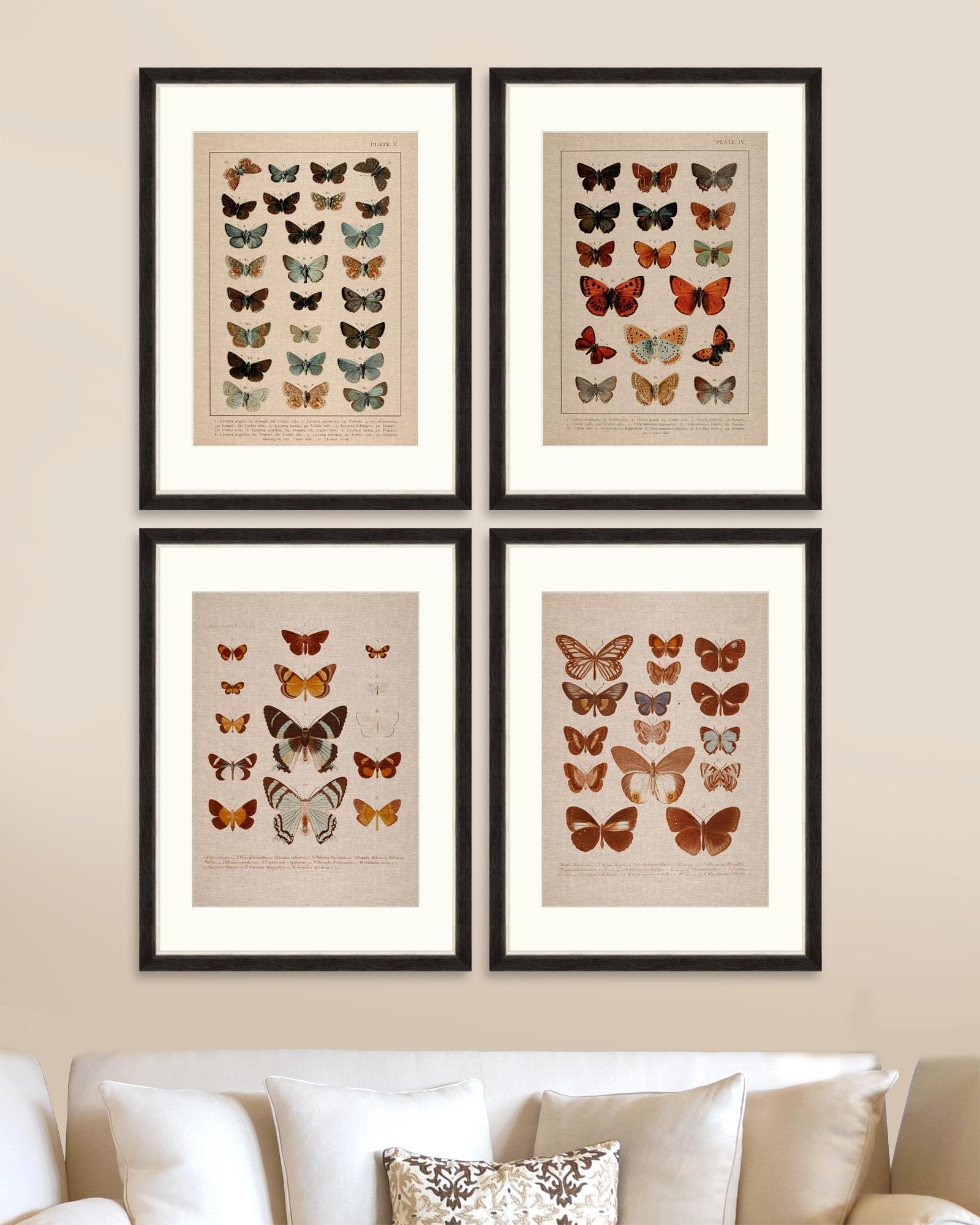 Tablou 4 Piese Framed Linen Butterflies Plate I & Iv