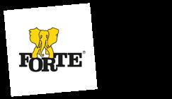 Forte Romania
