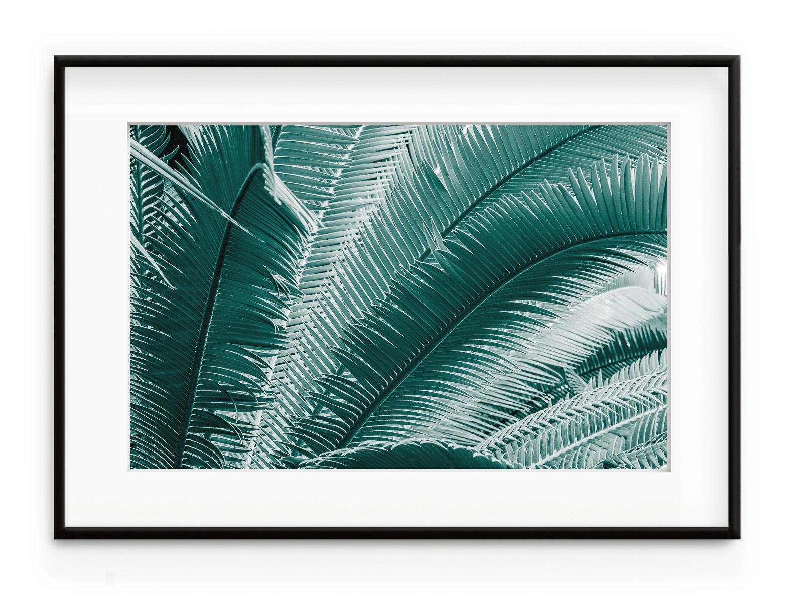 Tablou Palmes Bleues Aluminium Noir
