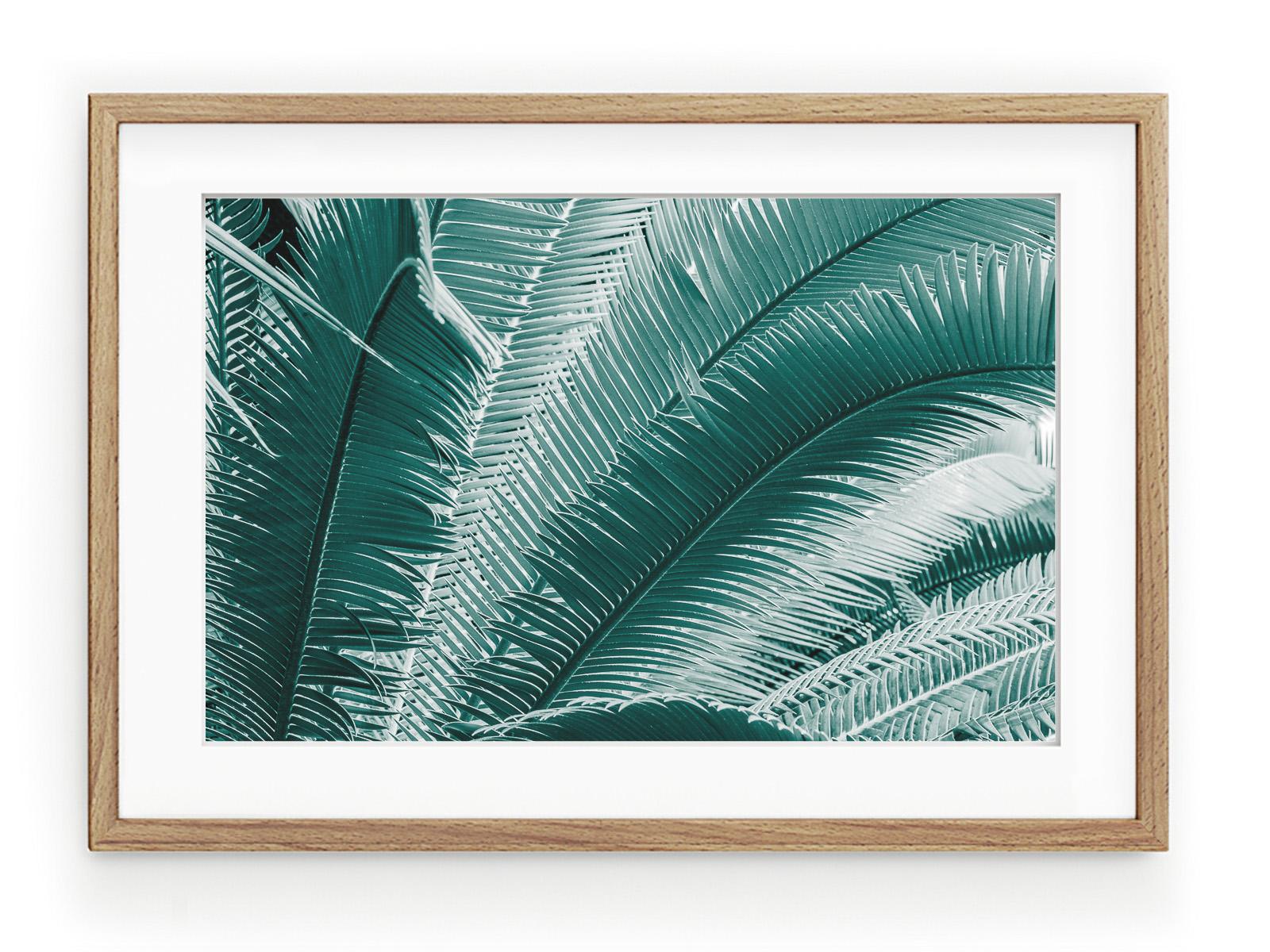 Tablou Palmes Bleues Oak