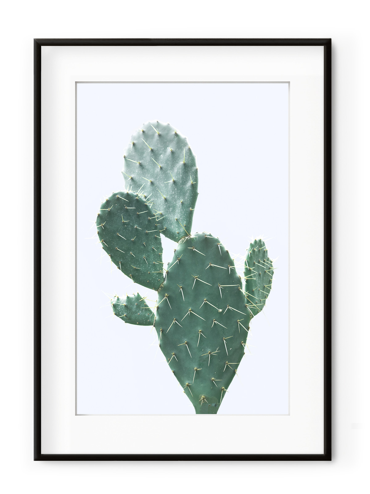 Tablou Plant on Blue Cactus Aluminium Noir