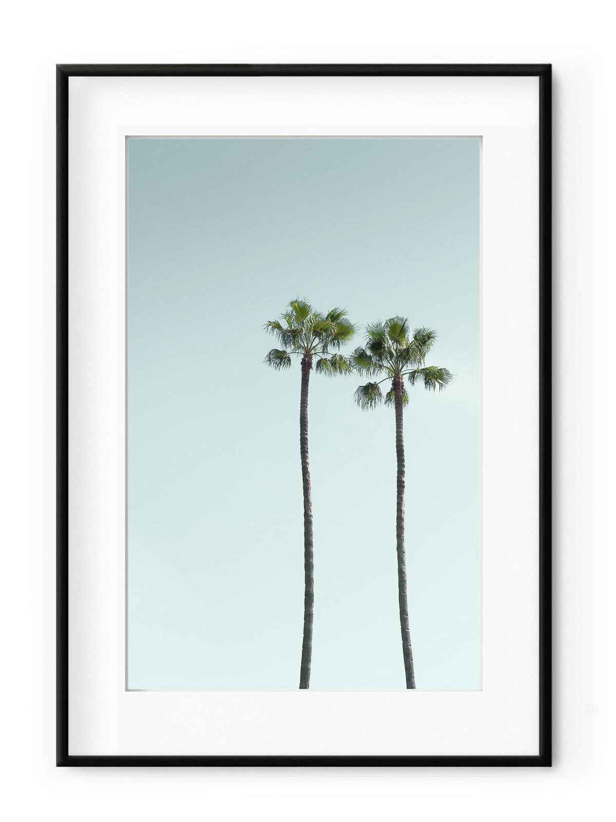 Tablou Los Angeles Palm Trees Aluminium Noir