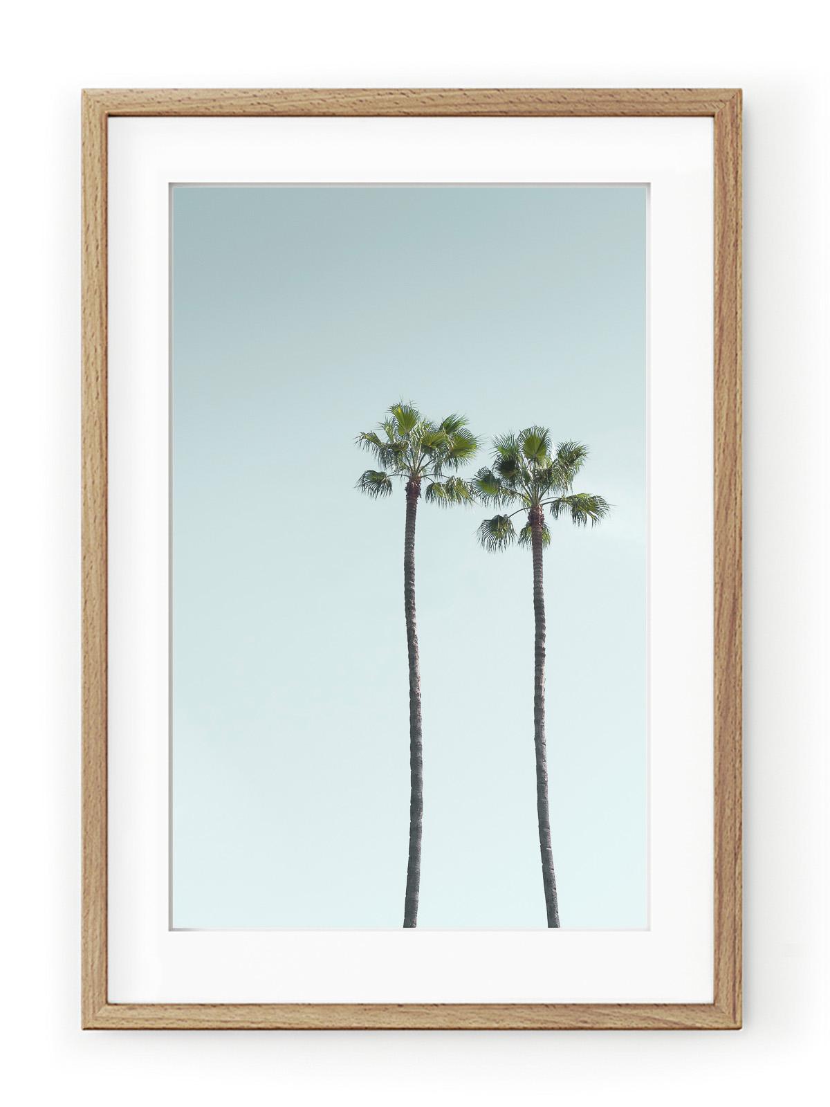 Tablou Los Angeles Palm Trees Oak