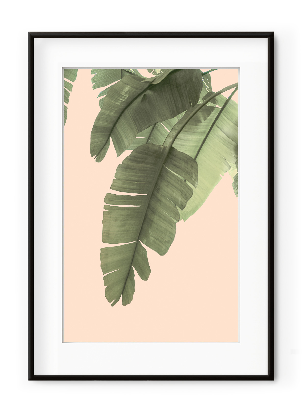 Tablou Tropical Banana Leaves Aluminium Noir