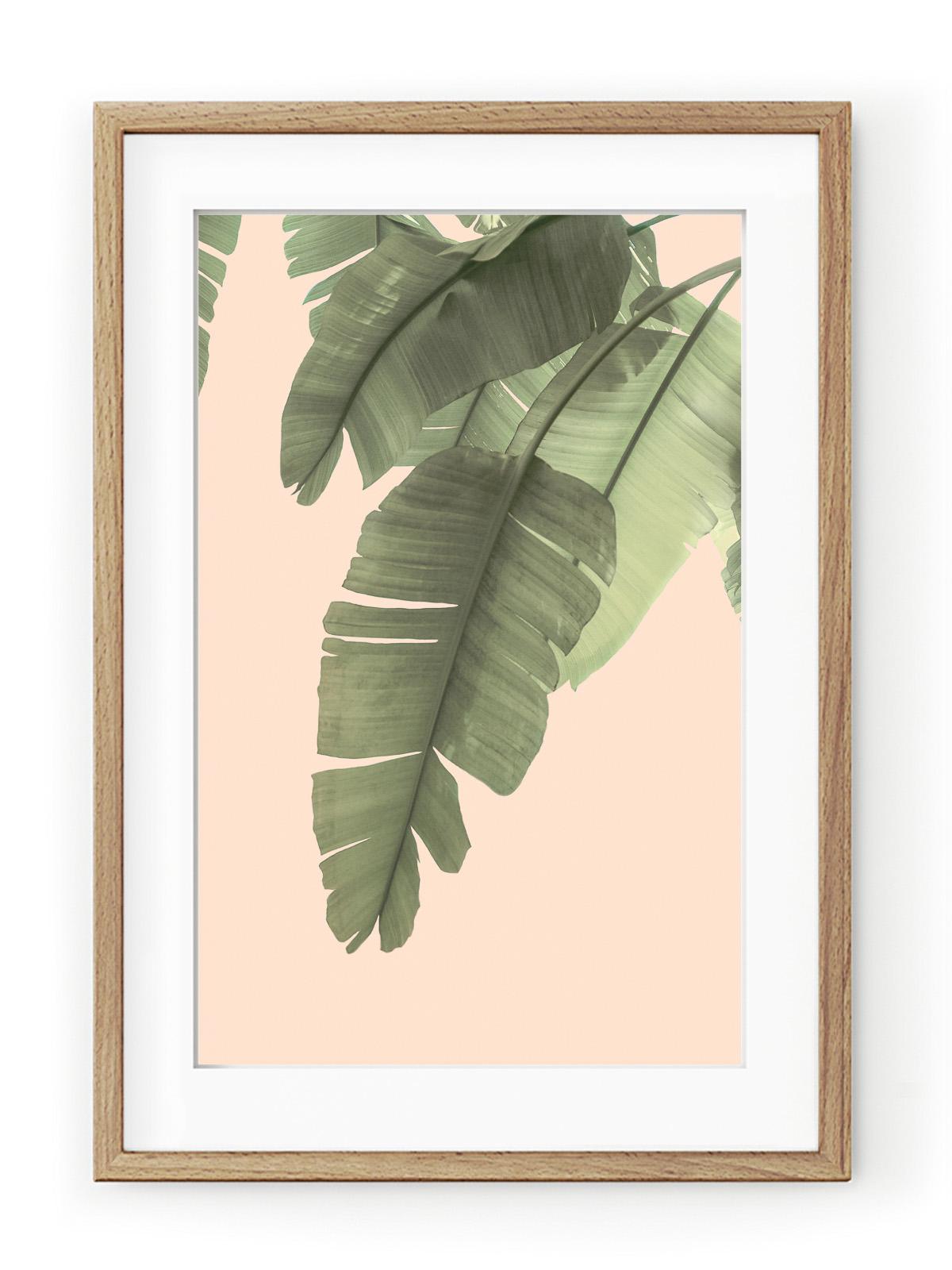 Tablou Tropical Banana Leaves Oak