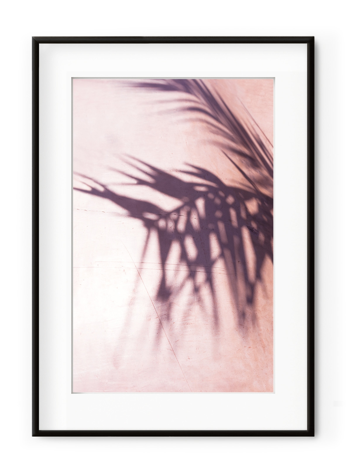 Tablou Palm Leaves Shadow Aluminium Noir
