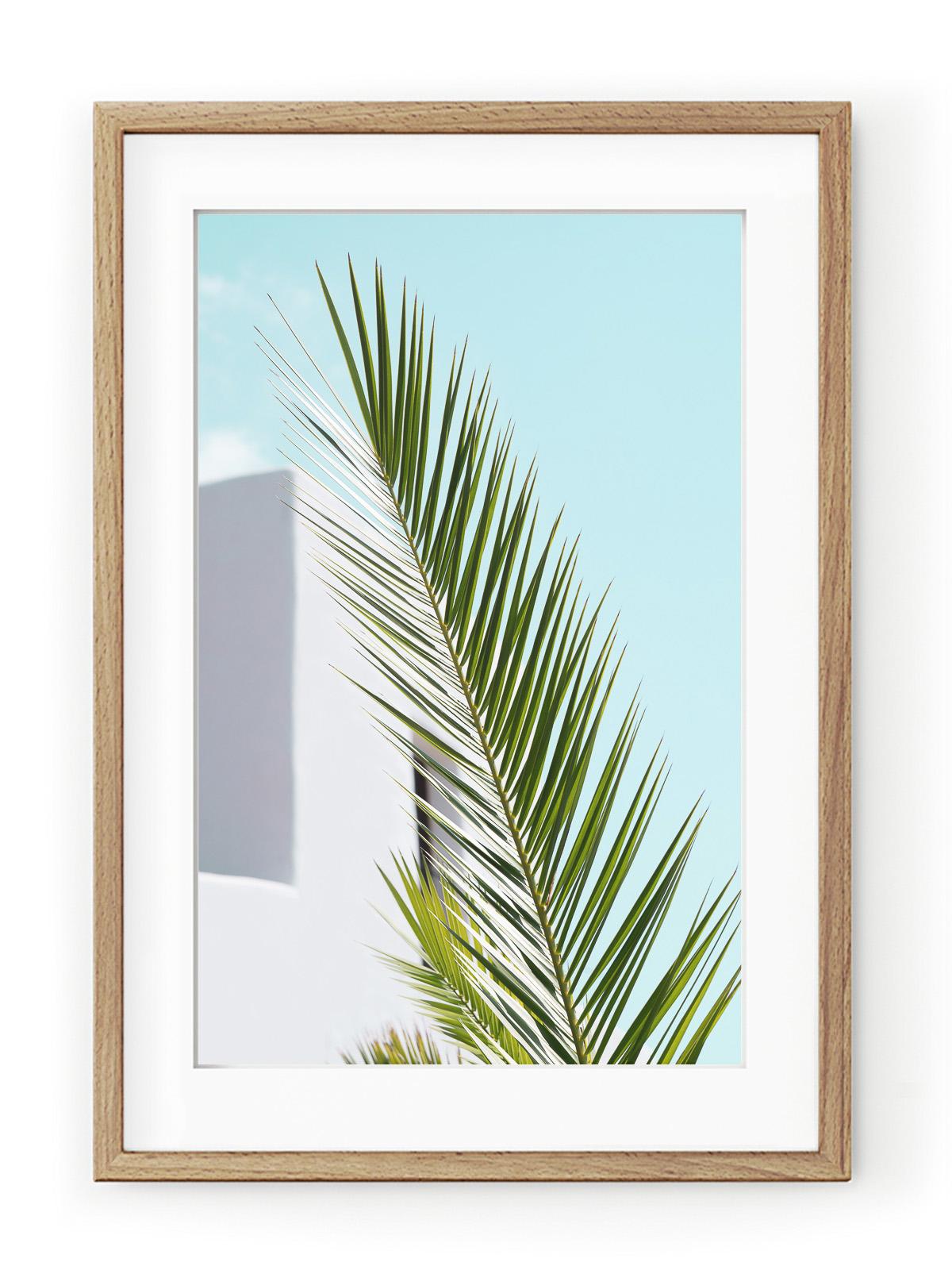 Tablou Minimal Palm Oak