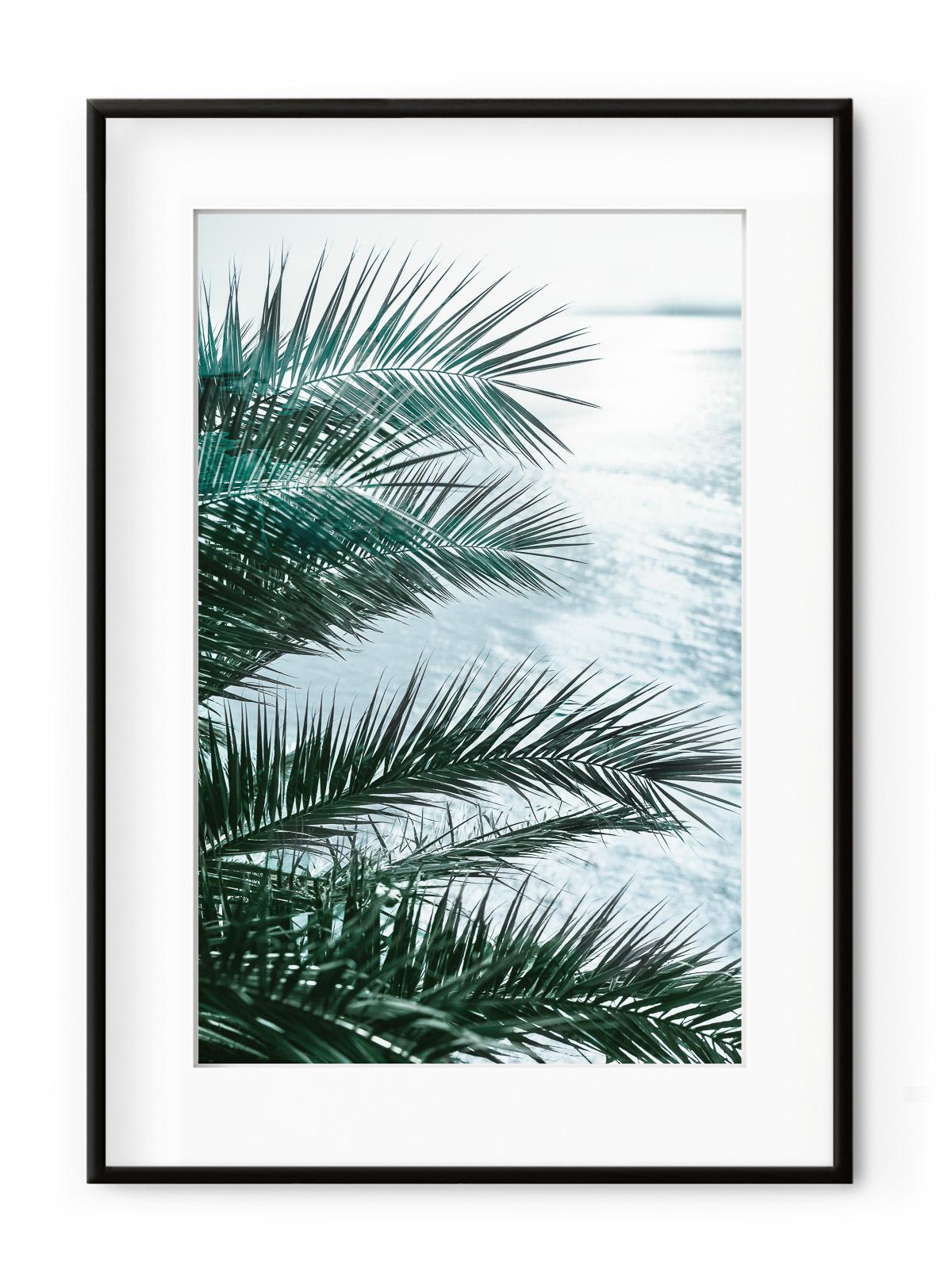 Tablou Seaside Palms II Aluminium Noir