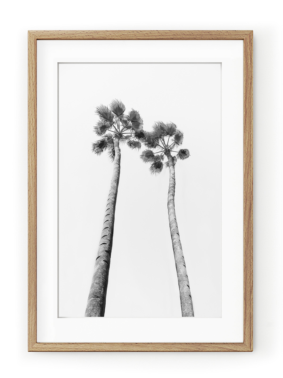 Tablou Black & White Palm Trees Oak II