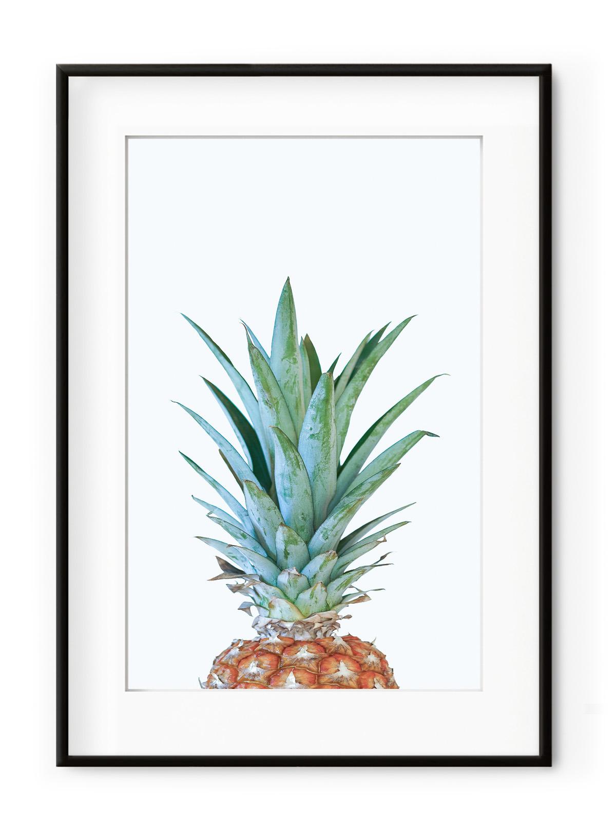 Tablou Minimal Pineapple Aluminium Noir