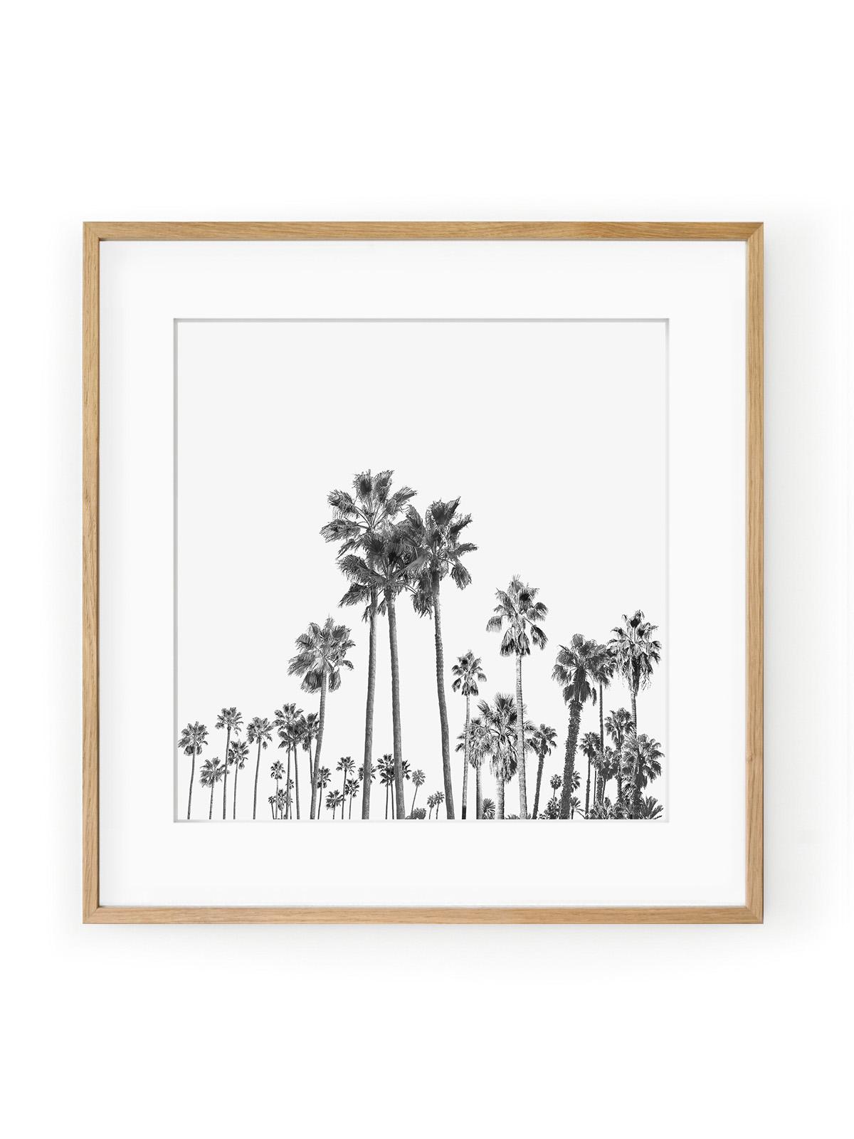 Tablou Black Palm Trees III Oak