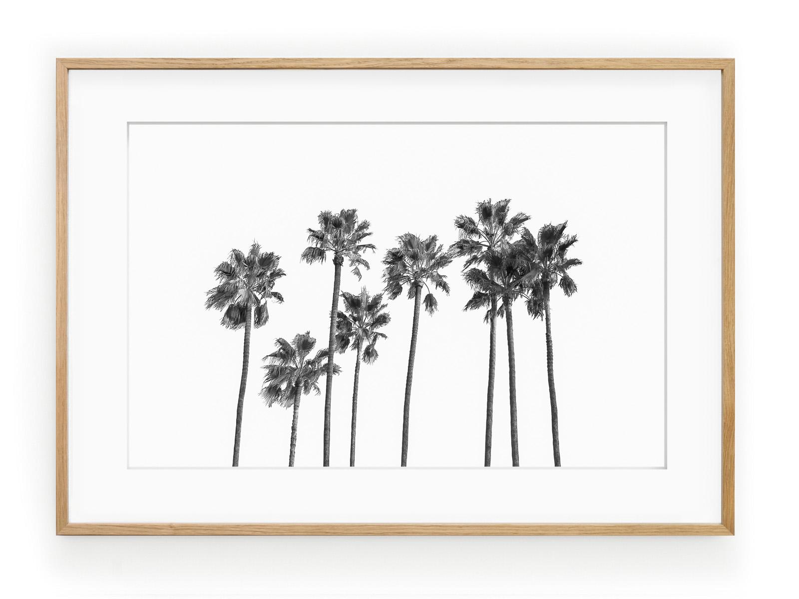 Tablou Black Palm Trees II Oak
