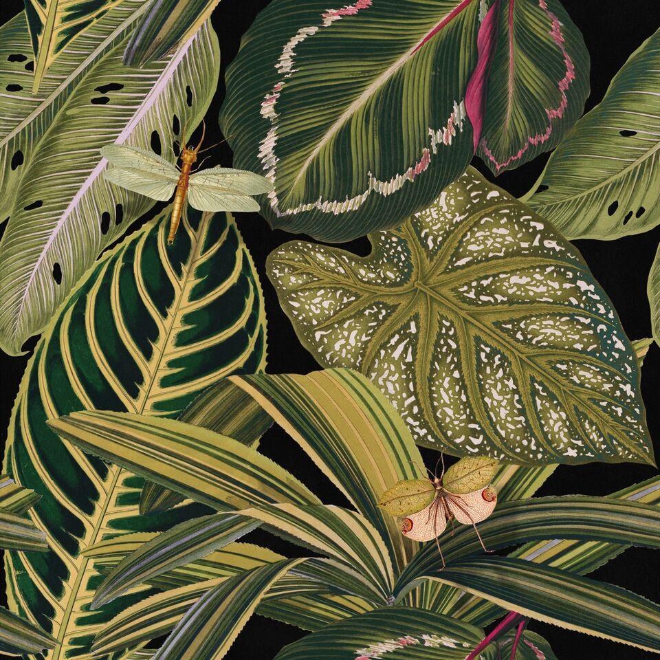 Set 3 role Tapet Imprimat Digital Amazonia imagine