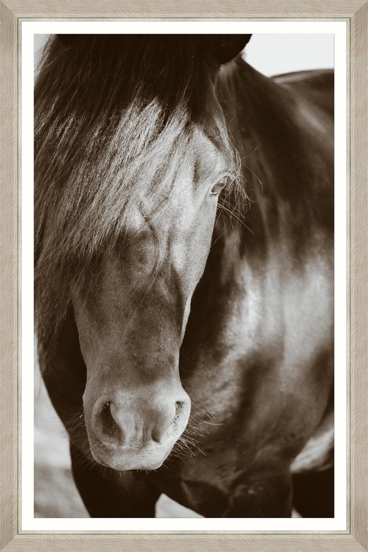 Tablou Framed Art Arabian Beauty