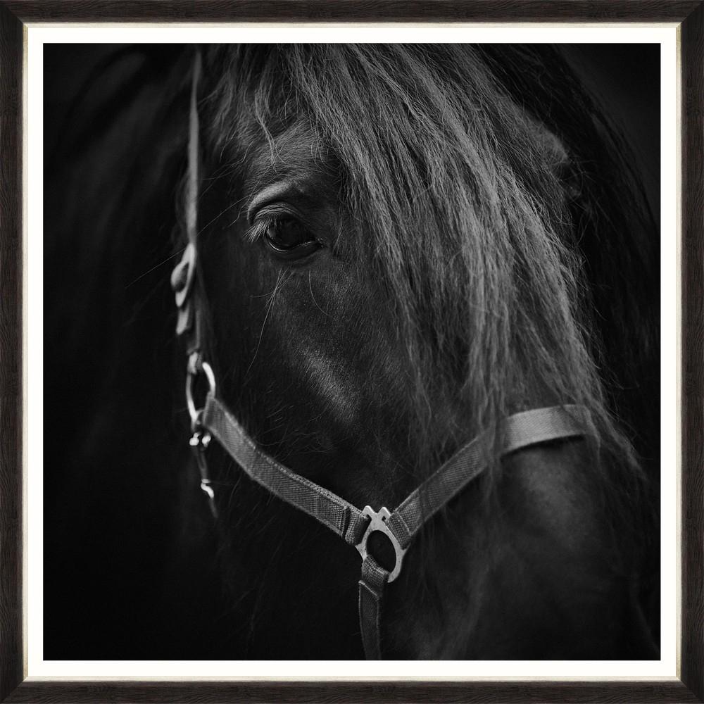 Tablou Framed Art Arabian Portrait