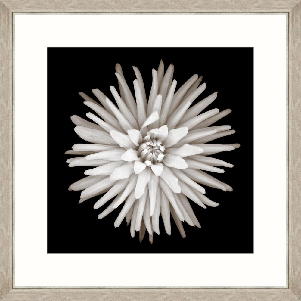 Tablou Framed Art Cactus Dahlia