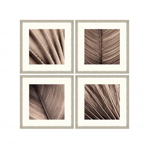 Tablou 4 piese Framed Art Sepia Palm Texture