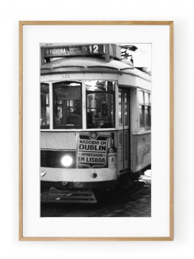 Tablou Electricos de Lisboa Oak