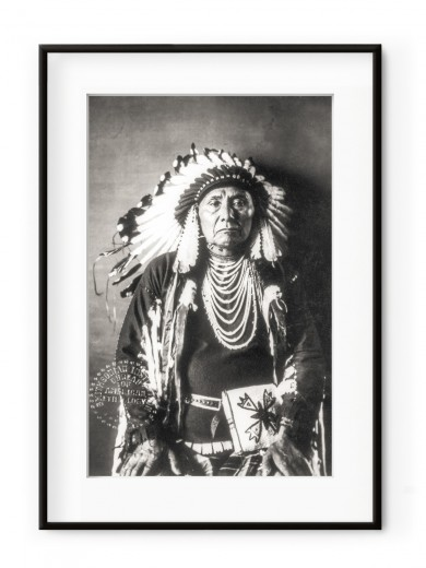 Tablou Native American Aluminium Noir