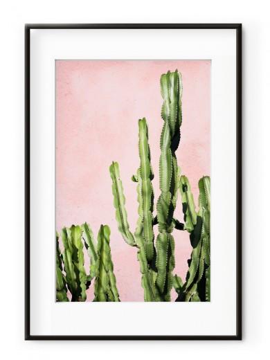 Tablou Plants on Pink Cactus Aluminium Noir