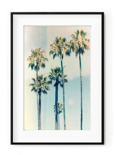 Tablou California Aluminium Noir