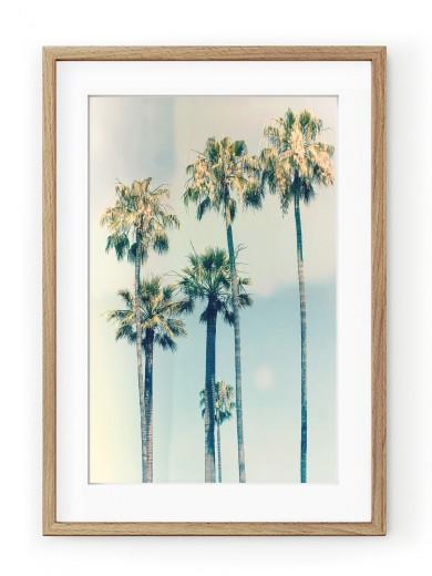 Tablou California Oak