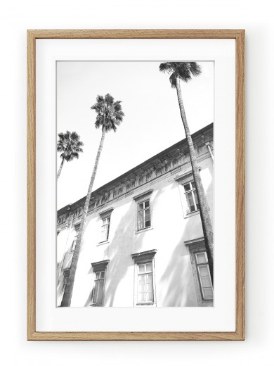 Tablou Architectural Palm Trees Oak
