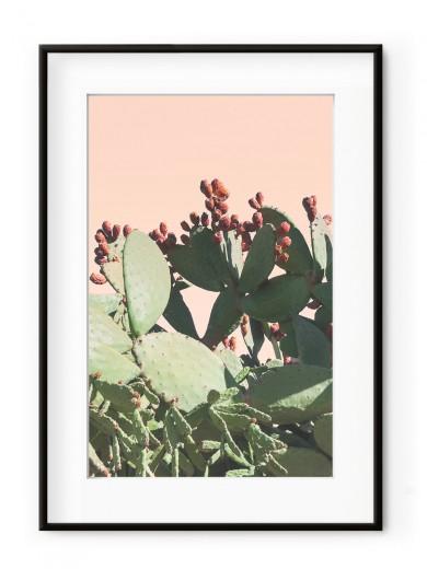 Tablou Californian Cactus Aluminium Noir