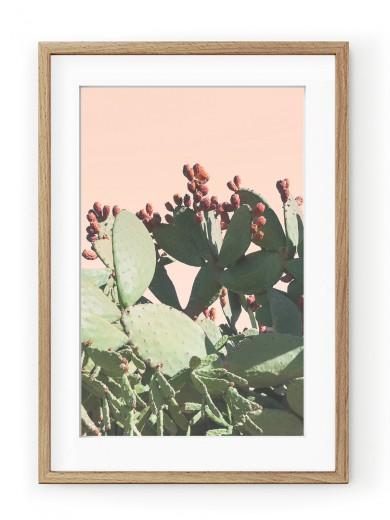 Tablou Californian Cactus Oak