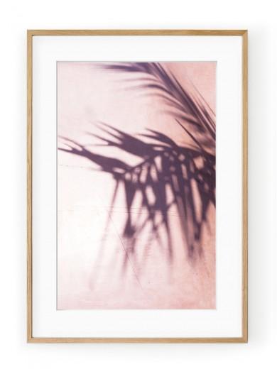 Tablou Palm Leaves Shadow Oak