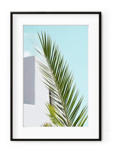 Tablou Minimal Palm Aluminium Noir