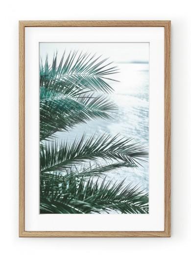 Tablou Seaside Palms II Oak