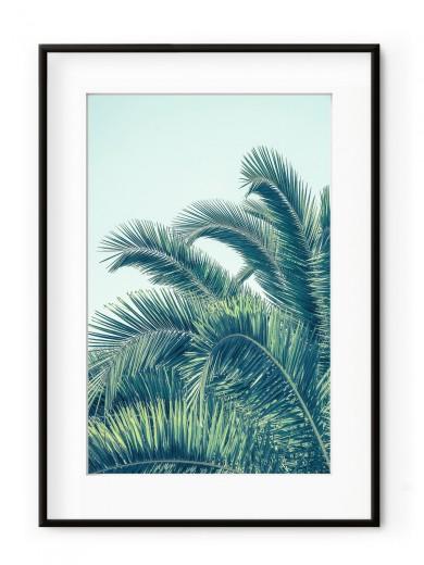 Tablou Seaside Palms Aluminium Noir