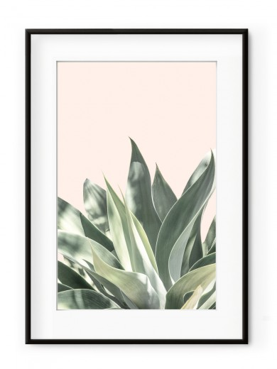 Tablou Light Pink Aloe Aluminium Noir