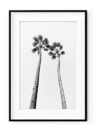 Tablou Black & White Palm Trees Aluminium Noir II
