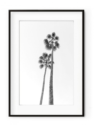 Tablou Black & White Palm Trees Aluminium Noir