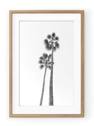 Tablou Black & White Palm Trees Oak