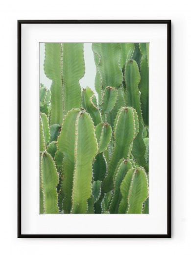 Tablou Neon Green Cactus Aluminium Noir