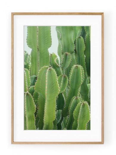 Tablou Neon Green Cactus Oak