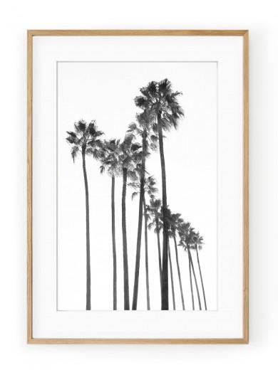 Tablou Black Palm Trees Oak