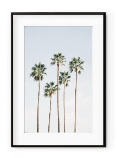 Tablou Regal Palm Trees Aluminium Noir