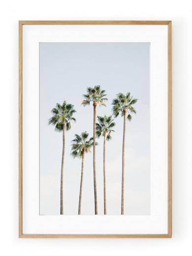Tablou Regal Palm Trees Oak
