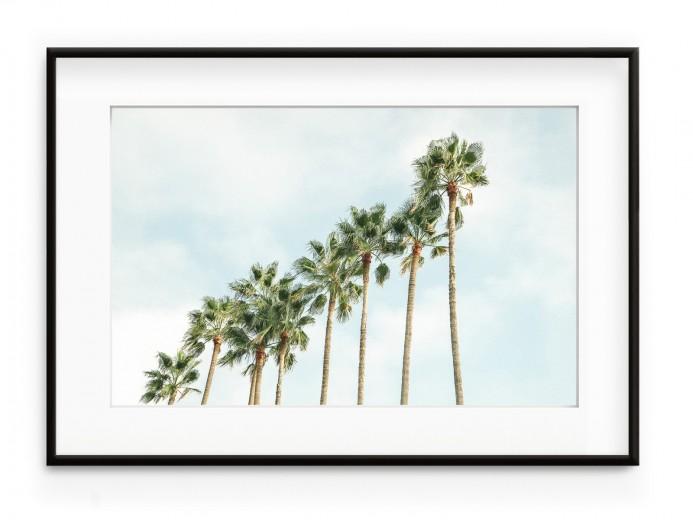 Tablou Palm Trees Squad Aluminium Noir