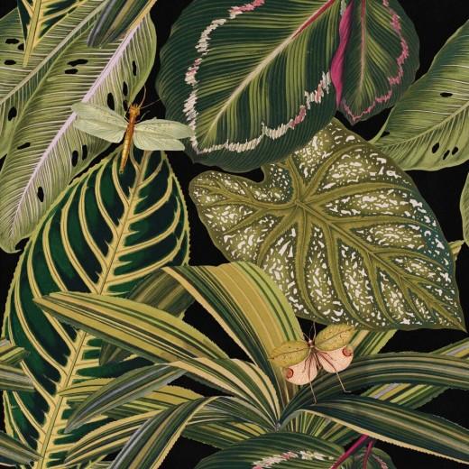 Set 3 role Tapet Imprimat Digital Amazonia