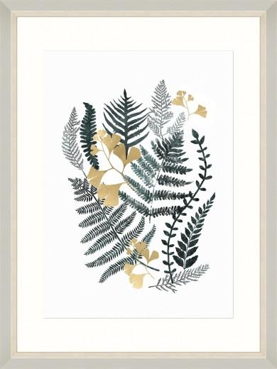 Tablou Framed Art Fern Composition II