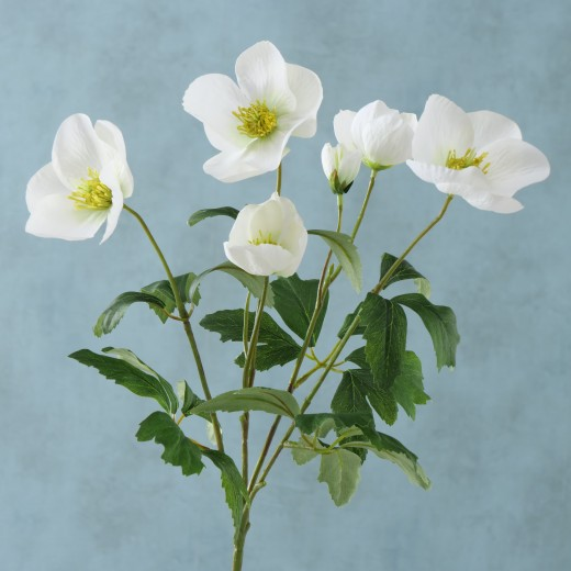 Fir floare artificiala Helleborus Alb / Verde, H38 cm