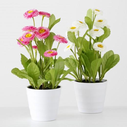 Flori artificiale in ghiveci Bellis Multicolor, Modele Asortate, Ø9xH30 cm