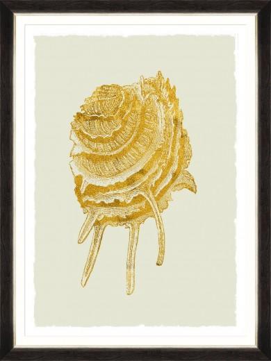 Tablou Framed Art Golden Seashell V