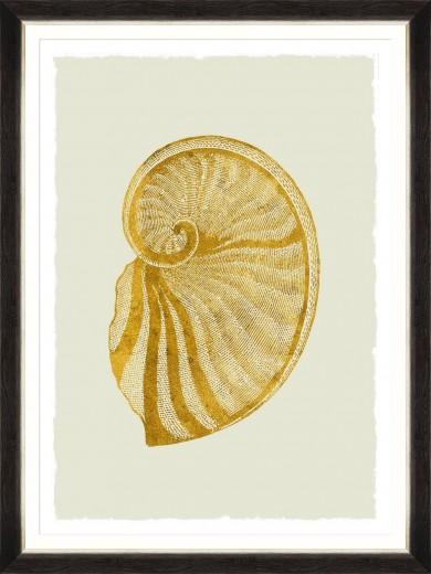 Tablou Framed Art Golden Seashell VI