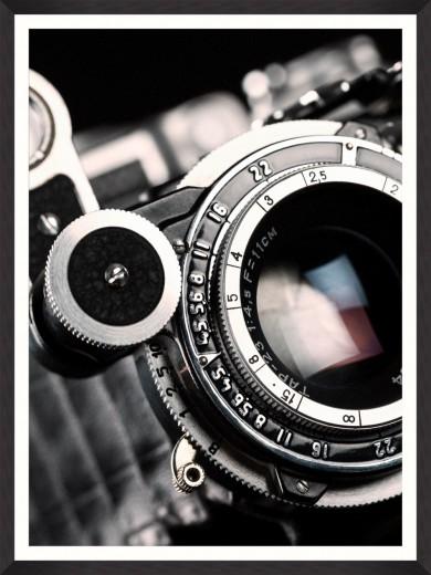 Tablou Framed Art Lens Closeup I